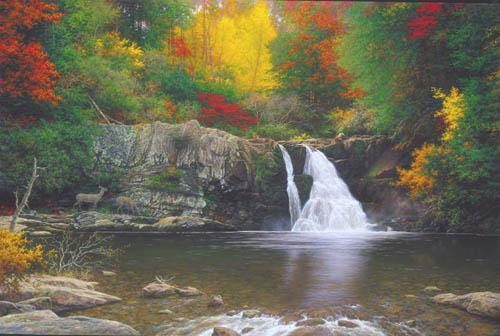 image by Larry Dyke Autumn in the smokies